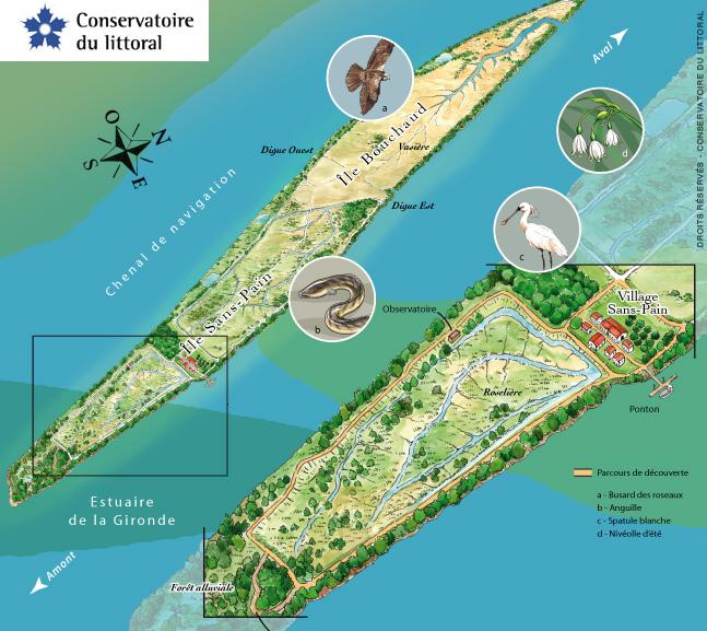 ile-nouvelleconservatoire-littoral
